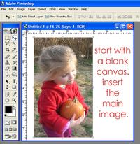 Crop1_copy