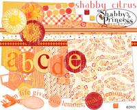 Shabbycitruslarge